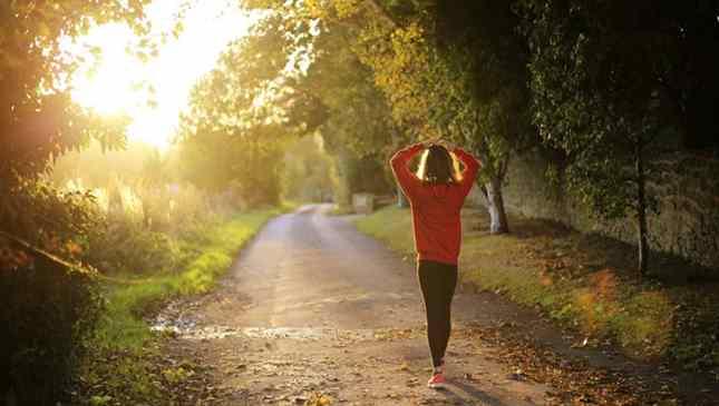 Exercícios físicos também beneficiam o cérebro