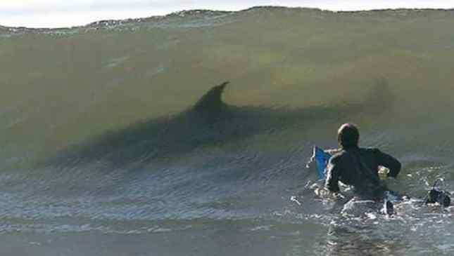 medo do mar
