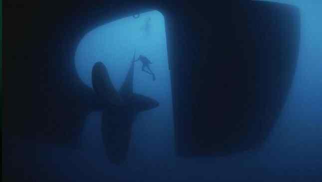talassofobia medo do oceano