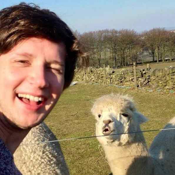 foto com alpaca