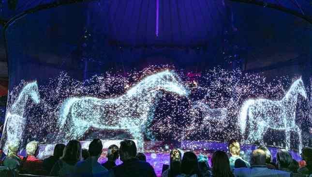 Hologramas de animais em circo