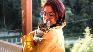 Estudos indicam que gatos copiam personalidade dos donos