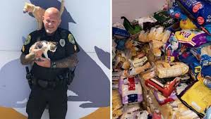 Multas de trânsito em cidade americana são cobradas em comida para animais abandonados