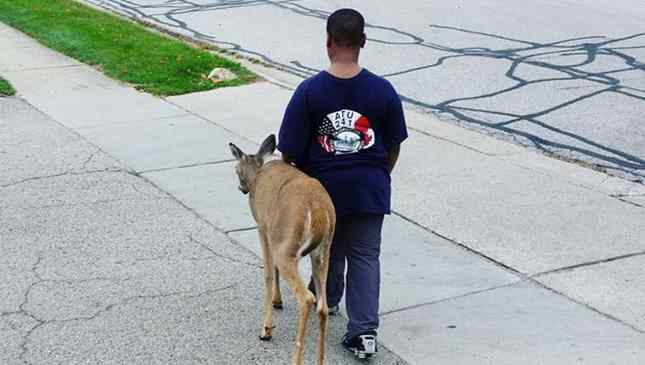 garoto-de-10-anos-ajuda-cervo-cego-1