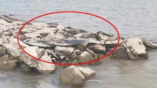 monstro do rio yangtzé