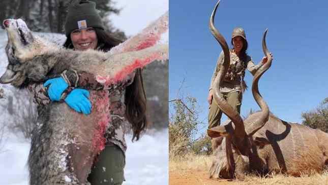 caçadora americana