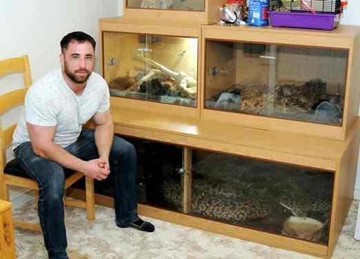 homem cria cobra de cinco metros