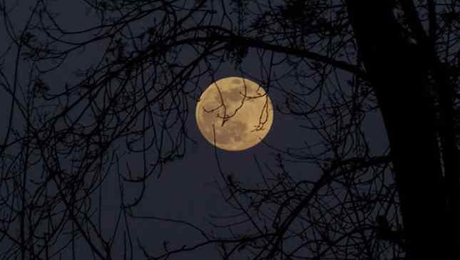 dias de lua cheia 2020