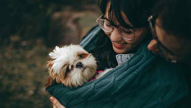 cães fazem bem para a saúde