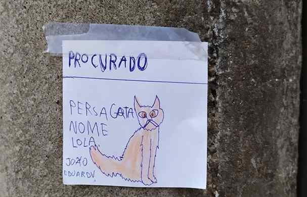 menino desenha cartazes