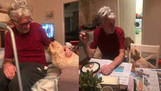amizade enter homem e gato