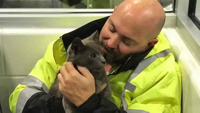 caminhoneiro reencontra gato e chora