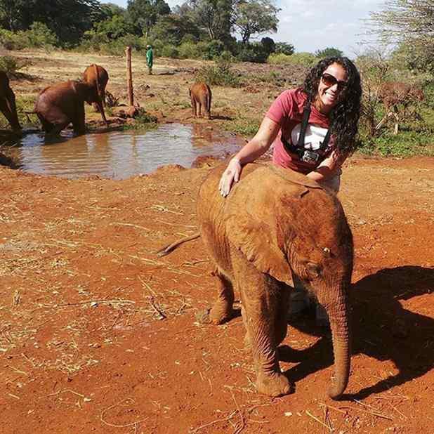 elefante e avestruz amigos