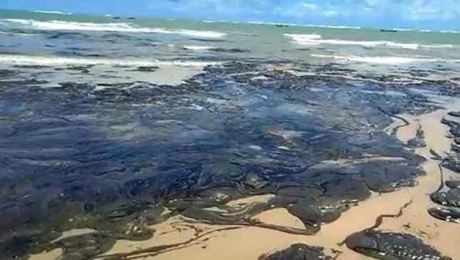 manchas de óleo no nordeste