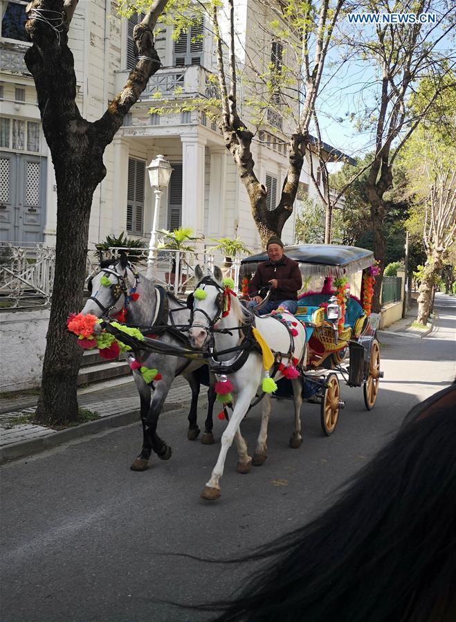 carroças com cavalos Istambul