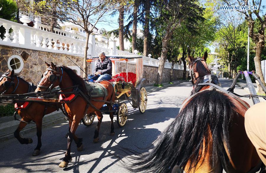 cavalos proibido em Istambul