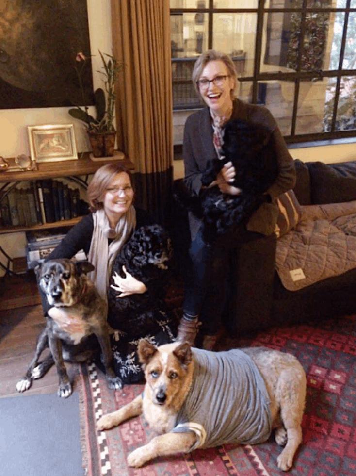 Jane Lynch adota cão gordo