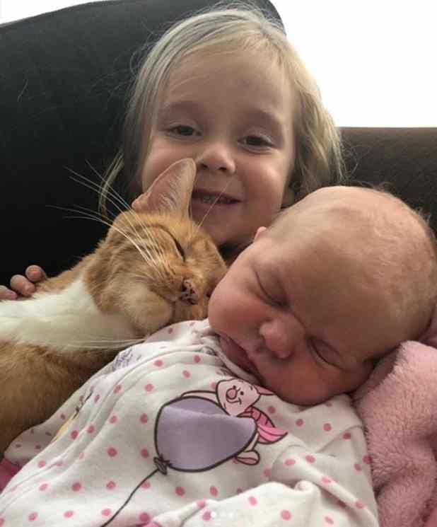 garotinha canta para gato