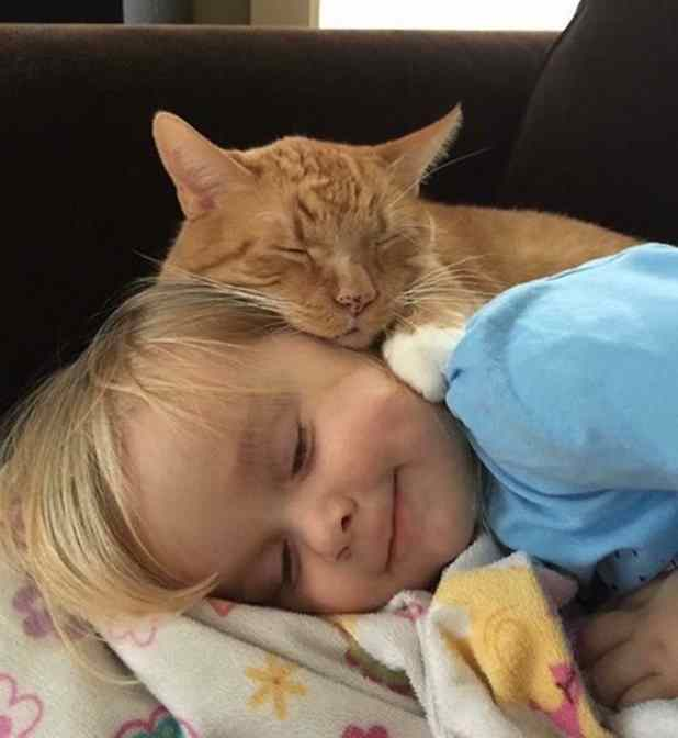 menina se despede de gato