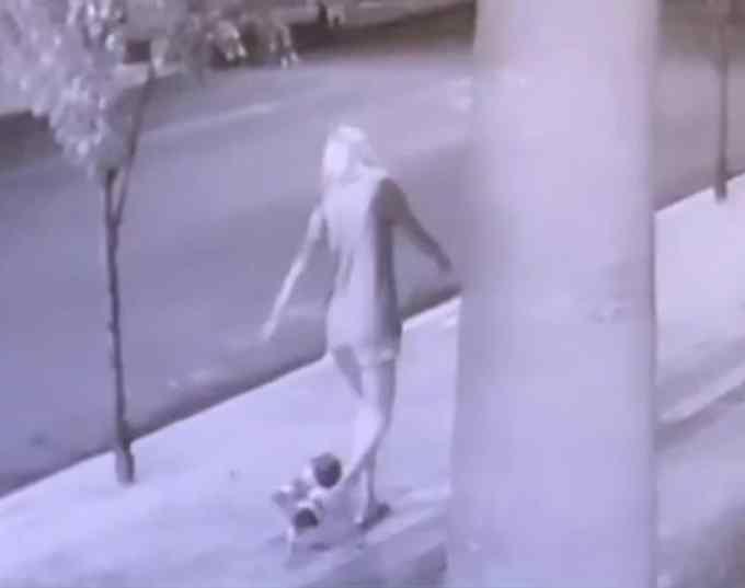 mulher abandona filhotes em caçamba de lixo