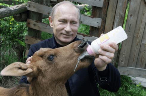 presidenta da Rússia crueldade contra animais