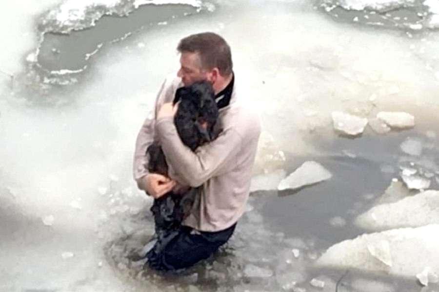 cachorro preso no gelo foi salvo