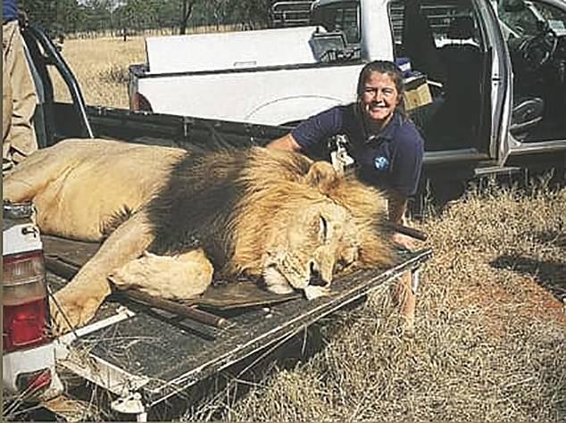 jovem foi atacada por leões