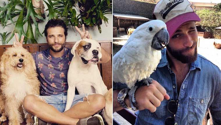 Bruno Gagliasso animais