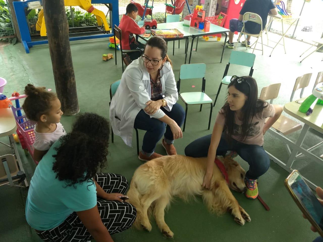 cão recebe cartinhas de crianças