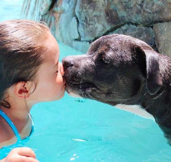 amizade entre menina e cachorro