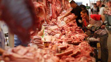 China proibiu consumo e venda de animais silvestres