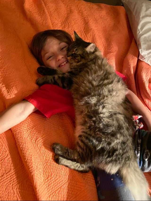 menino e gatinho