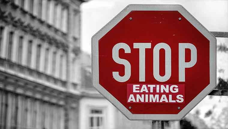 o que um vegano não pode comer