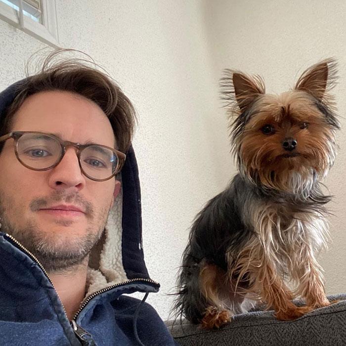cachorro com dentadura do dono fotos