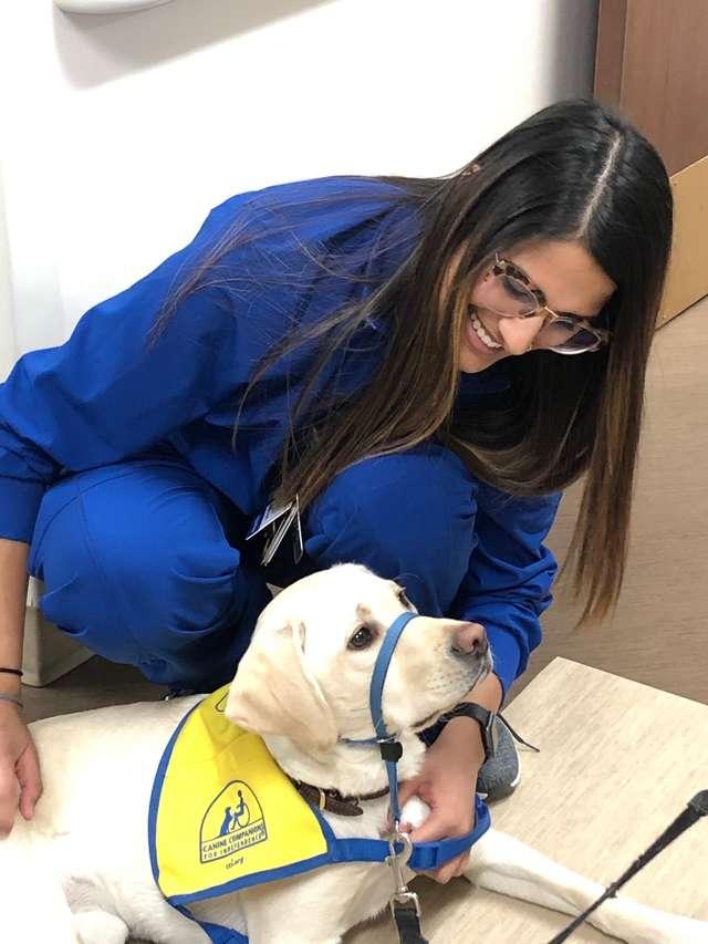 Cachorro conforta médicos e enfermeiros