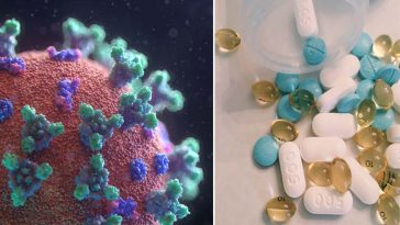 Remédio para piolhos pode matar coronavírus