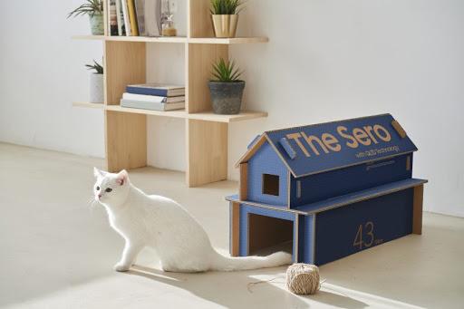 casas para gatinhos