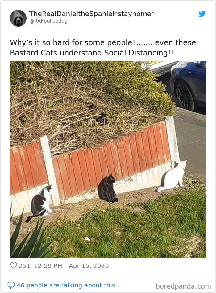 regras de distanciamento social