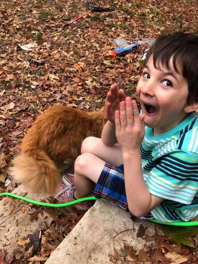 amizade entre garotinho e gato