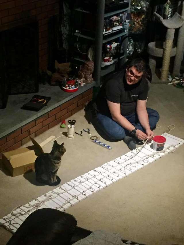 melhor torre para gatos do mundo
