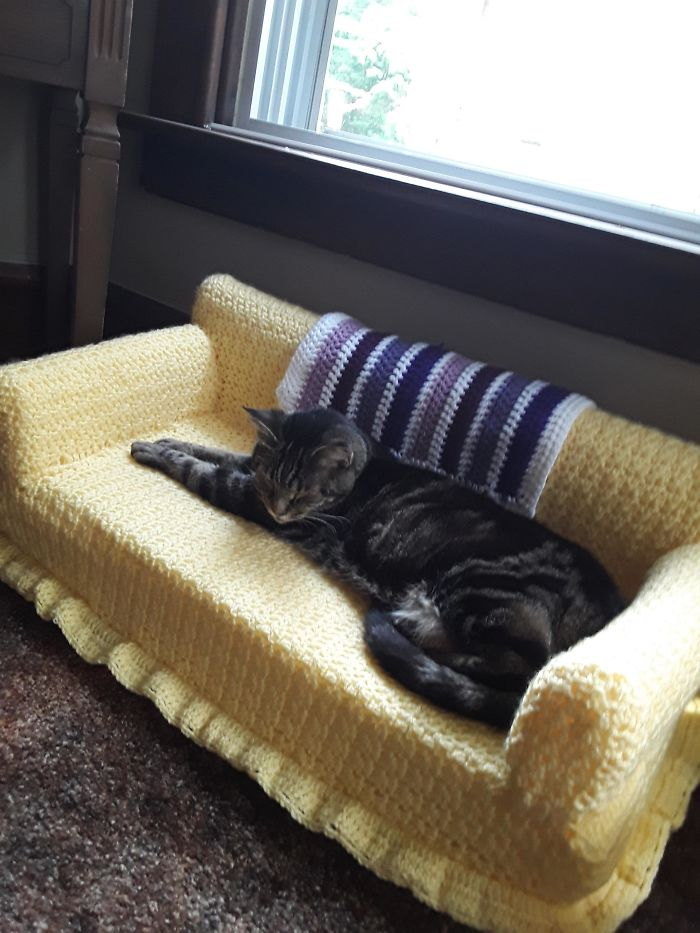 sofás de crochê para gatos feitos em casa