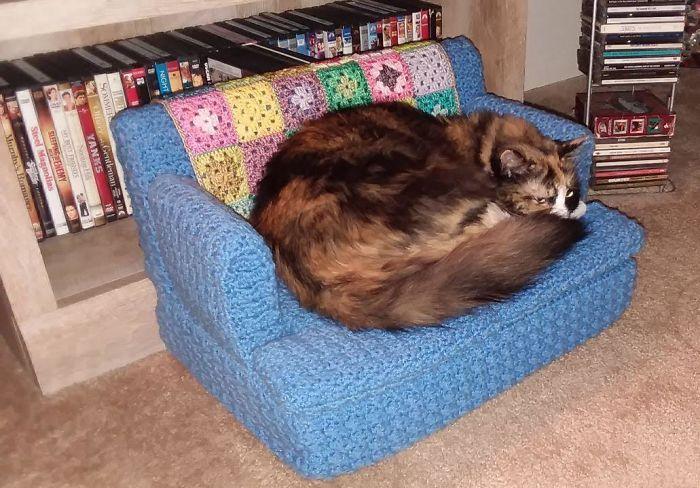 sofás de crochê para gatos domésticos