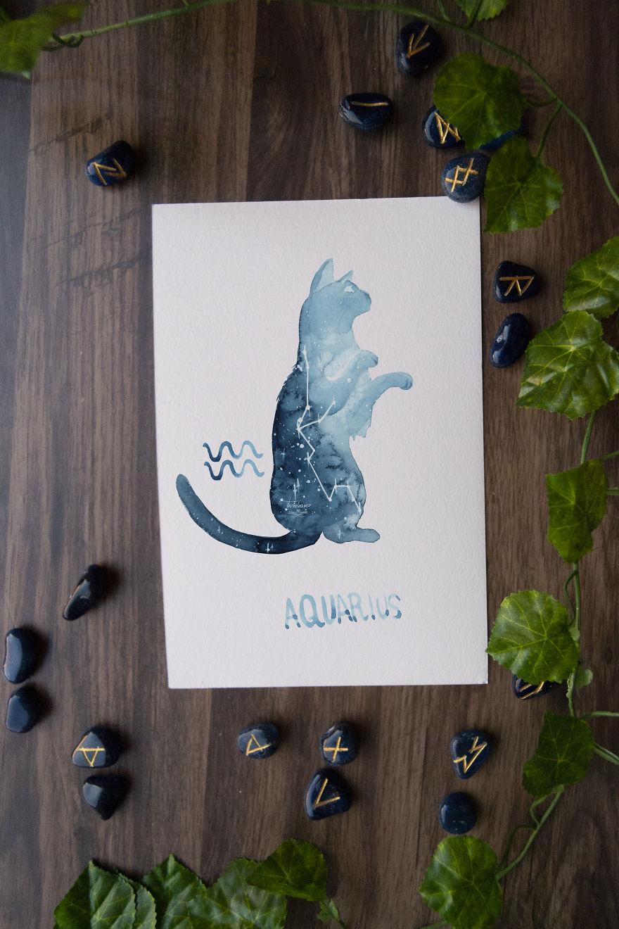 gatos signos