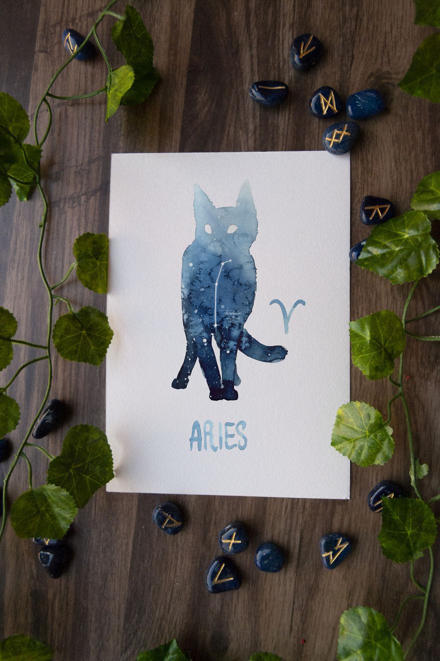 Gatinhos representam os signos