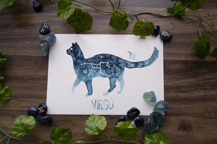 Gatinhos representam os 12 signos do zodíaco