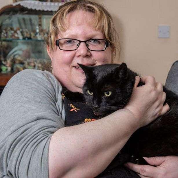 gatinho preto sente doença da dona