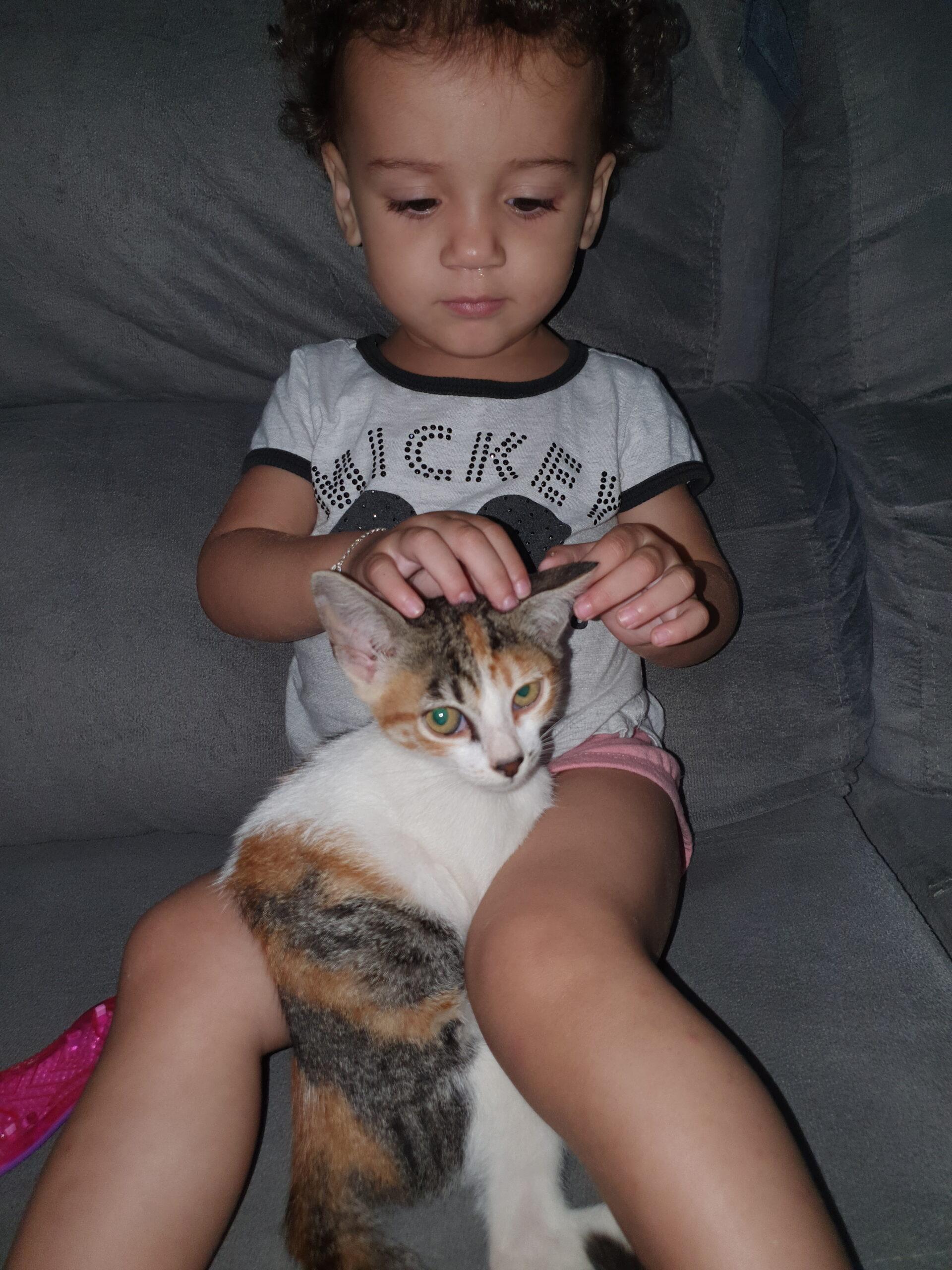 garotinha com gato