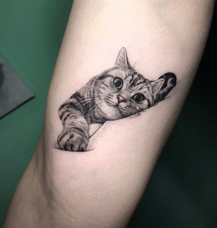 tatuagens de gatinho realistas