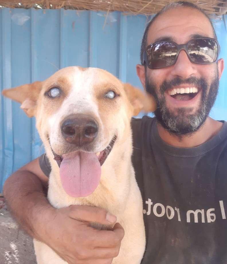 Cachorro cego feliz