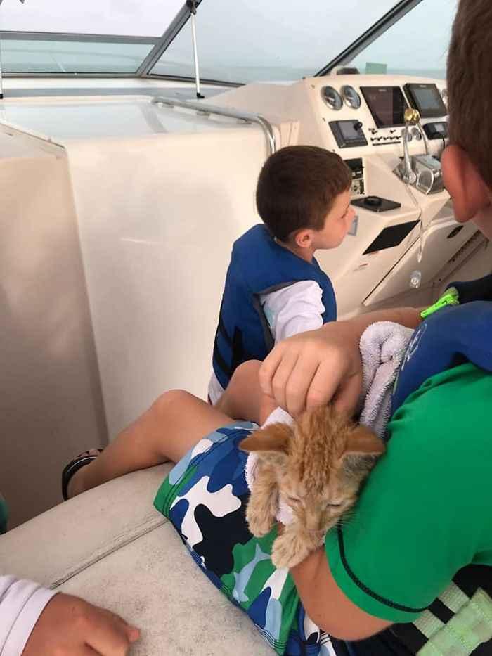 barco de pesca resgata gato no mar